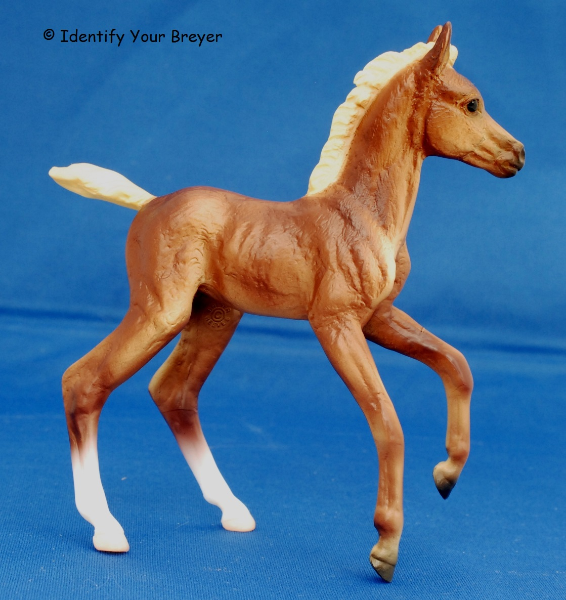identify your breyer warmblood foal